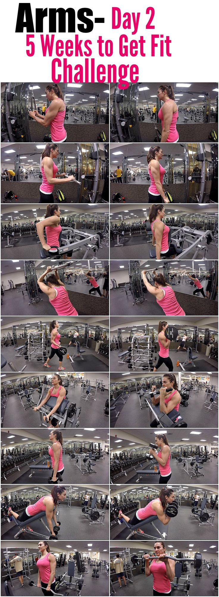 Pinterest: Kaylaparker27 :) 5 Weeks to Fit Challenge Day 2-ARMS