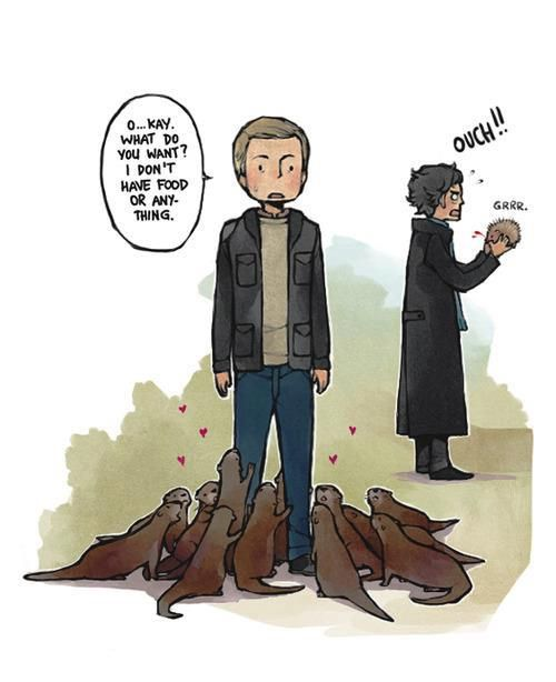 John Watson: Otter Whisperer. I like Sherlock in the background with the hedgehog.