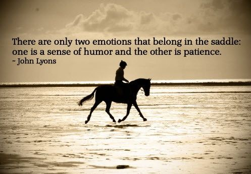 25 best ideas about inspirational horse quotes on
