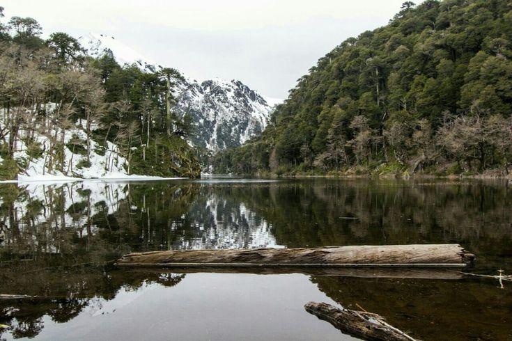 O Parque Nacional Huerquehue fica a 145 km de Temuco, na região de Araucanía no Chile, na província de Cautín, cidades de Cunco e Pucón. Tem um clima chuvoso entre maio a setembro, mas 2017 foi um …