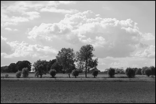 flemish landscape by Bart Govaere: Bart Govaere, Photographs, Landscapes, Flemish Landscape