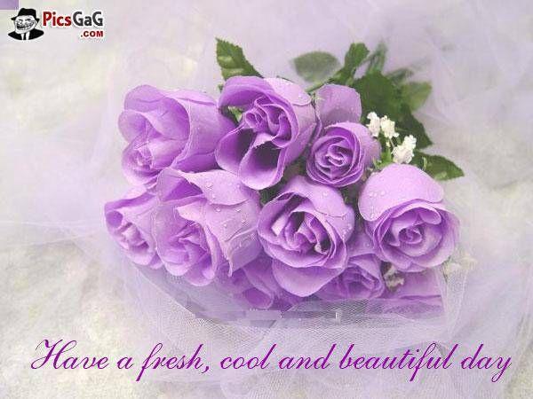 Good+Morning+Beautiful+Poems | Morning flowers good morning picture which is very beautiful and send ...