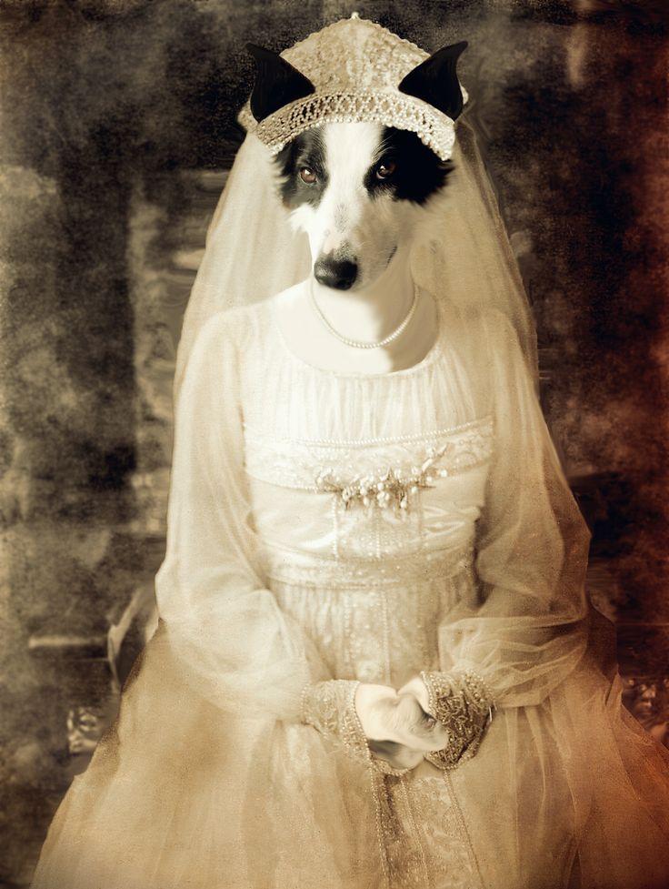 """Tsarevna Bella Purinovska"", gold version. Anthropomorphic dog digital collage."