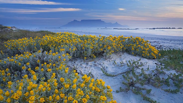 south african landscape photography by stuart apsey