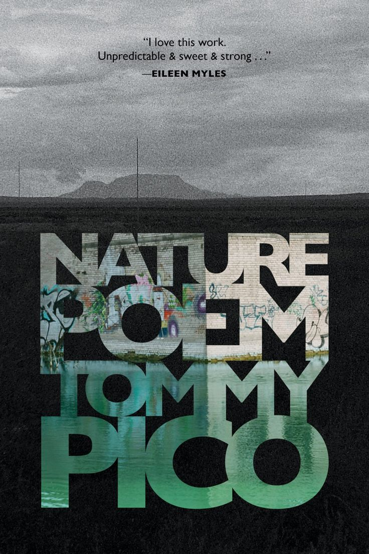 A book-length poem about how an American Indian (or NDN) writer can't bring himself to write about nature, but is forced to reckon with colonial-white stereotypes, manifest destiny, and his own identity as an young, queer, urban-dwelling poet. Nature Poem follows Teebs―a young, queer, American Indian (or NDN) poet―who can't bring himself to write a …