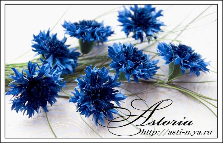 Astoria's Made with love blog tutorial for beautiful Cornflowers