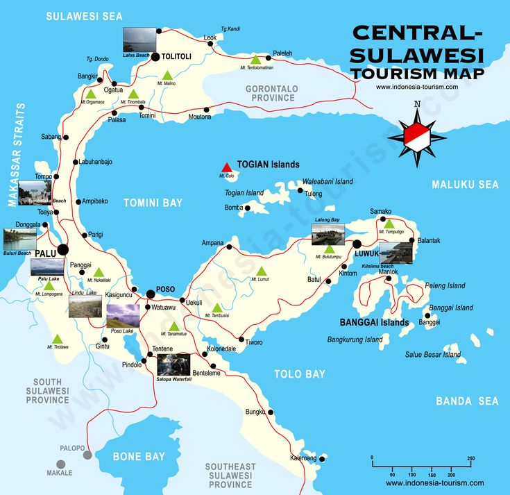 Central Sulawesi - Tourist Map