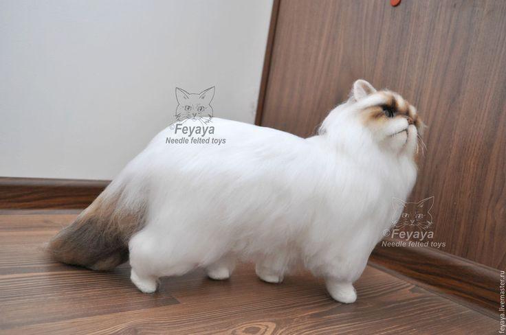 Купить Кошка Марта экзотическая пушистая - белый, кошка, кот, коты и кошки…