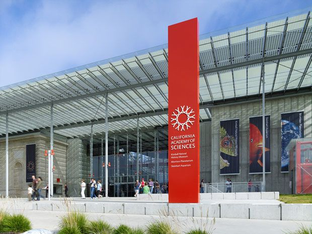 Pentagram's new identity for the California Academy of Sciences. Photo: Tim Griffith.