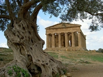 History-architecture - Visit Italy Tours