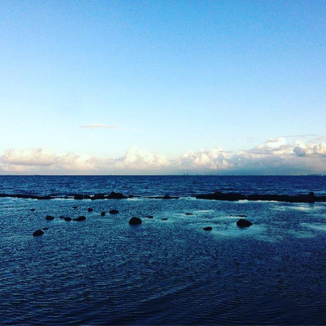 Wayne Wong (@dubb37) • Instagram photos and videos