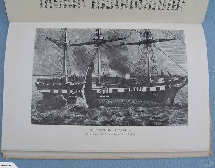 Whaling Journal of Capt W.B. Rhodes 1836-1838 | Trade Me