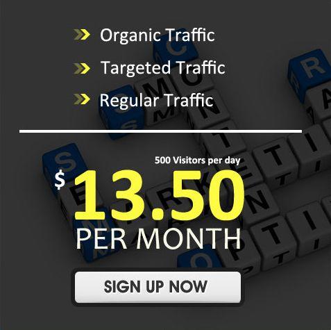 Buy Website Traffic | Web Traffic | Buy US Visitors – http://www.webvisitors.net/