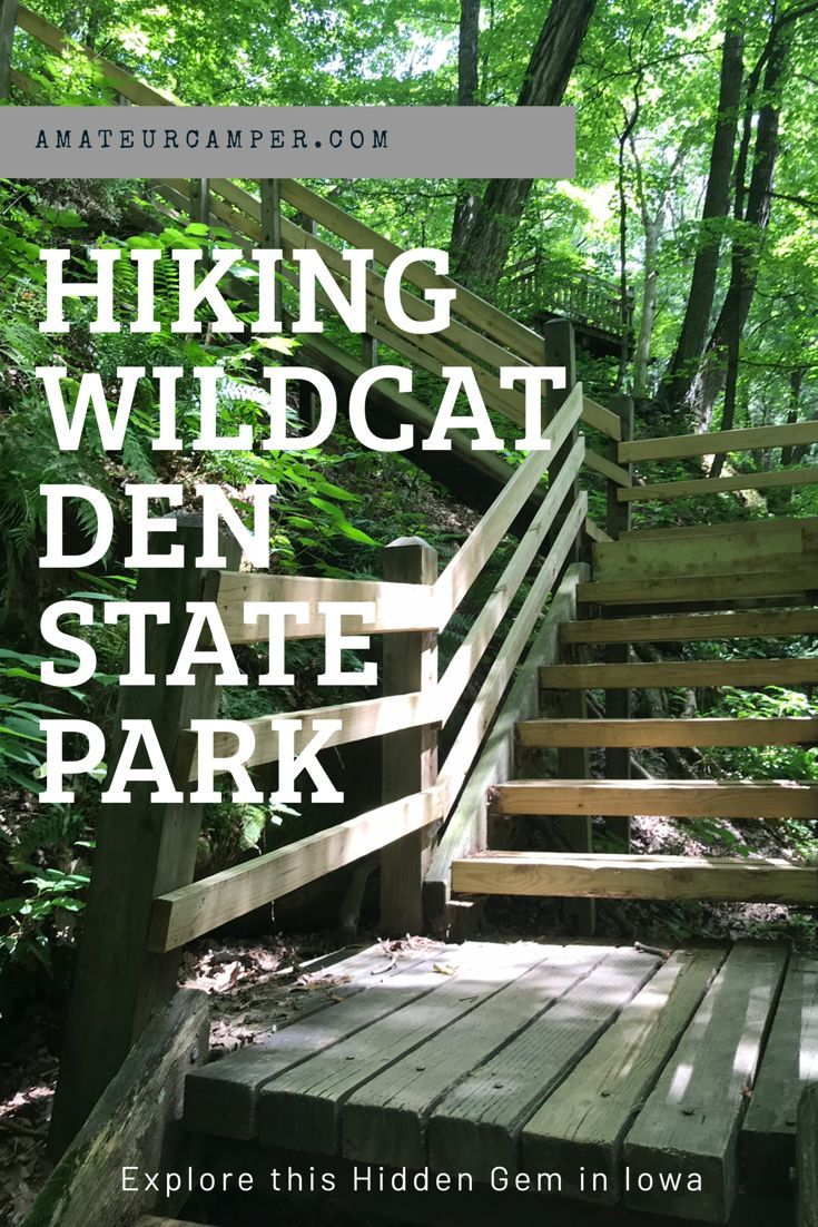 Hiking Wildcat Den State Park State Parks Outdoor Travel Day Trips