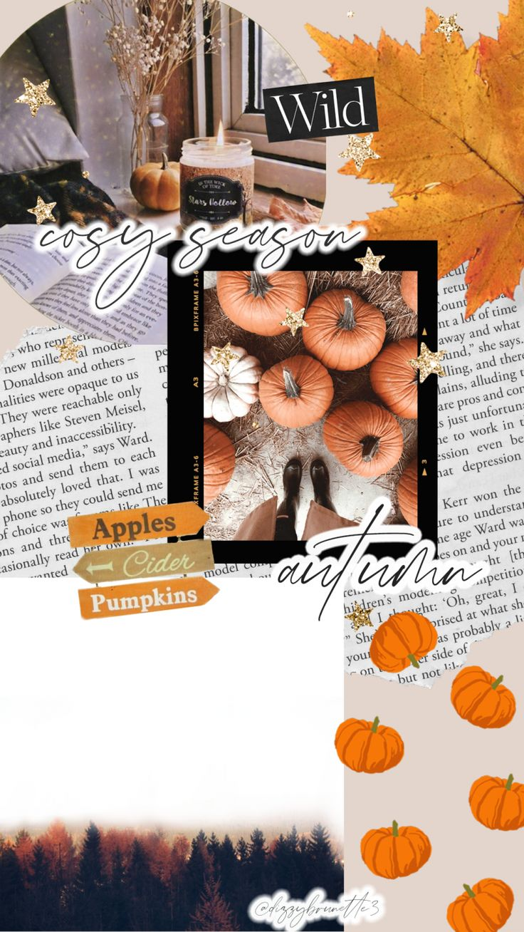 Free Autumn Wallpapers For You To Download Corrie
