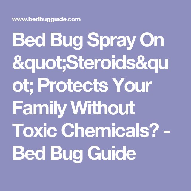 best 25+ bed bug spray ideas on pinterest | bed bugs, bed bug