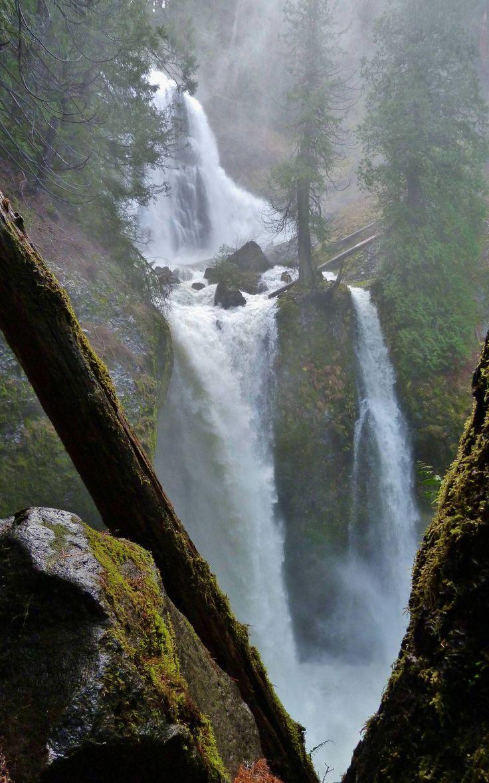 Falls Creek Falls, WA, USA on a wet Black Friday morning [OC] [2069x3315] : EarthPorn