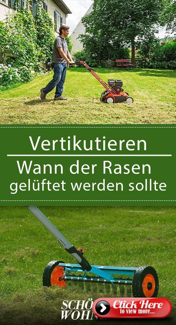 Scarify: Wann ist der richtige Zeitpunkt?   – Rasenpflege