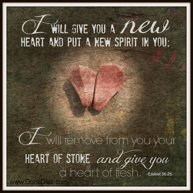 Image result for scripture about the heart
