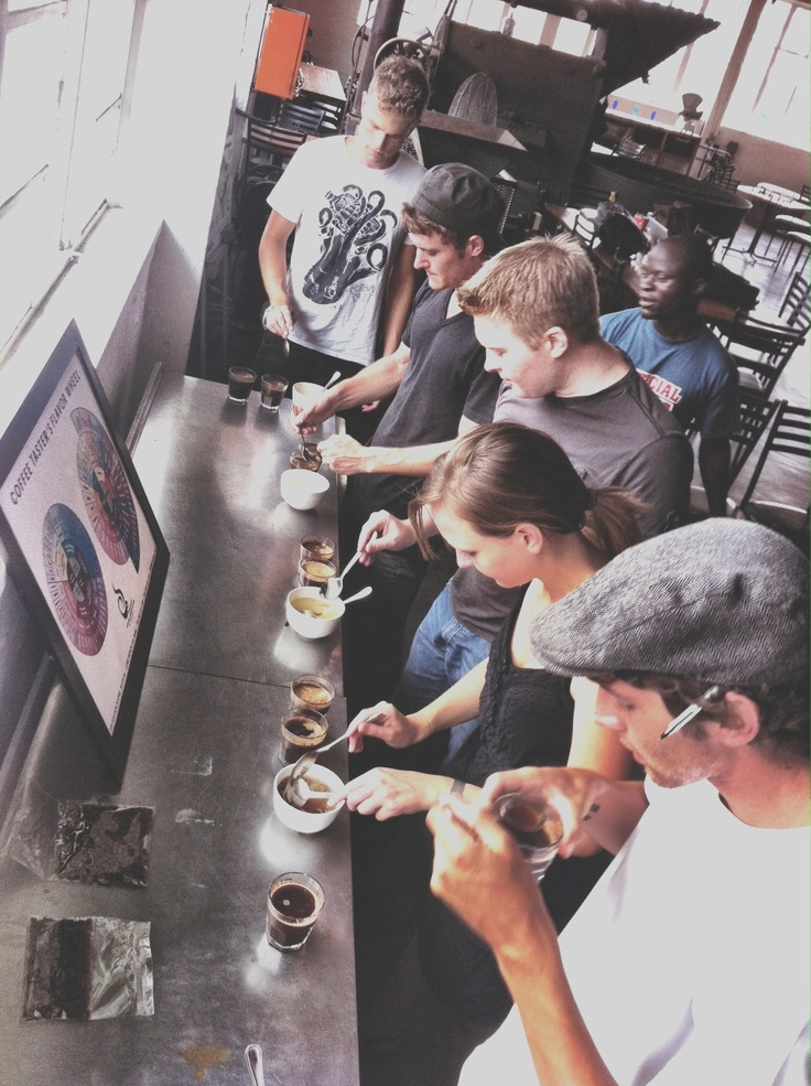 Cupping coffee.