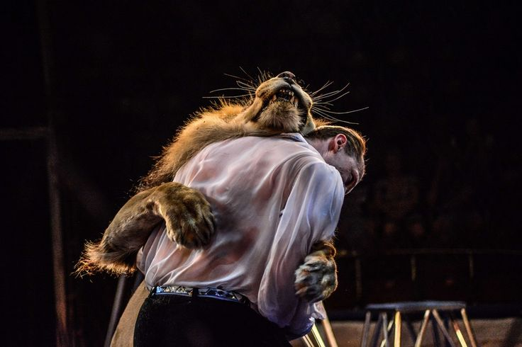DANCES WITH LIONS: Alexei Pinko performed with one of his lions in Kiev on Thursday. Mr. Pinko and his wife, Veronica, are animal trainers for the National Circus of Ukraine, and perform with seven lions. (Zoya Shu/NurPhoto/Zuma Press)