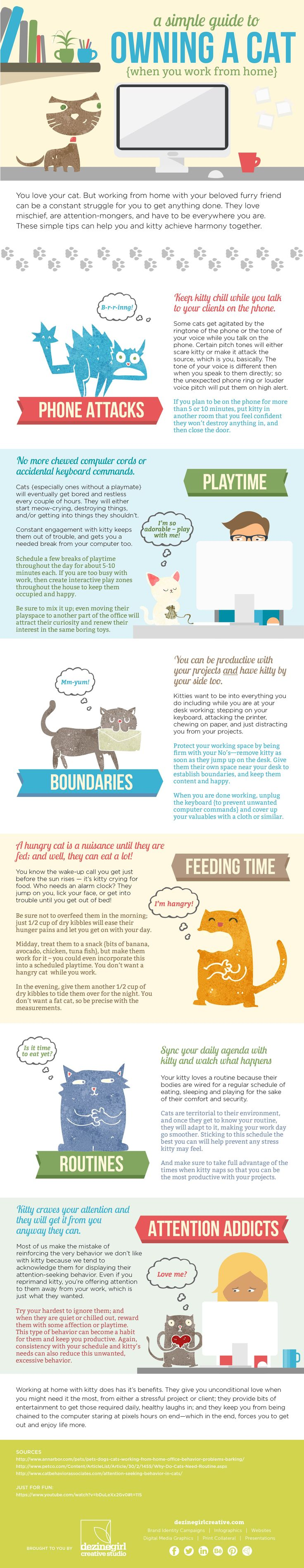 How to Work from Home with a Cat {Infographic}   at The Color Loft   design and words by #dezinegirl creative studio 02.04.15