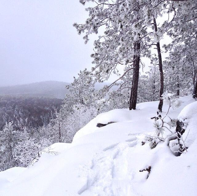 Algonquin Provincial Park in the winter. #DiscoverON