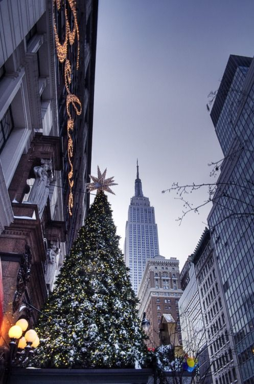 Believe! - Macy's facade tree and the Empire State Building view ... Christmas in New York City