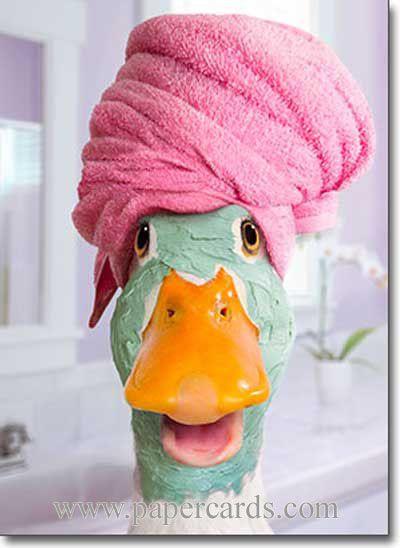 Haha..Duck Facial