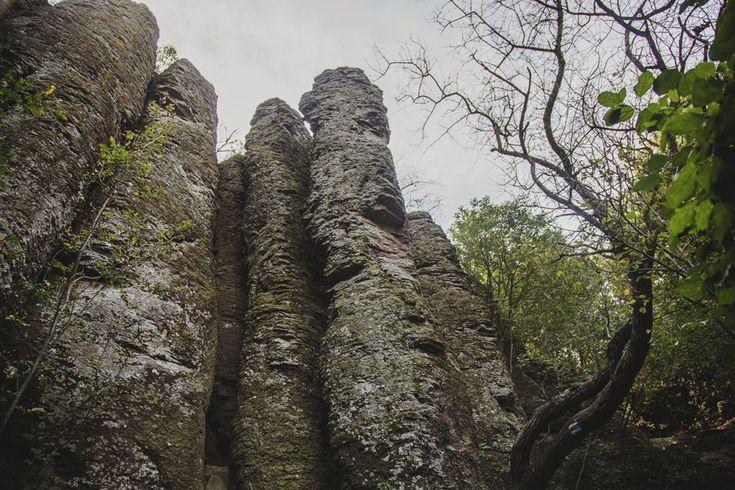 A kőből faragott orgonák, amiket ősszel látni kell - Túra a Szent György-hegyen