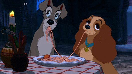 CarnaPET leva folia para cães e gatos no Cine Drive-in