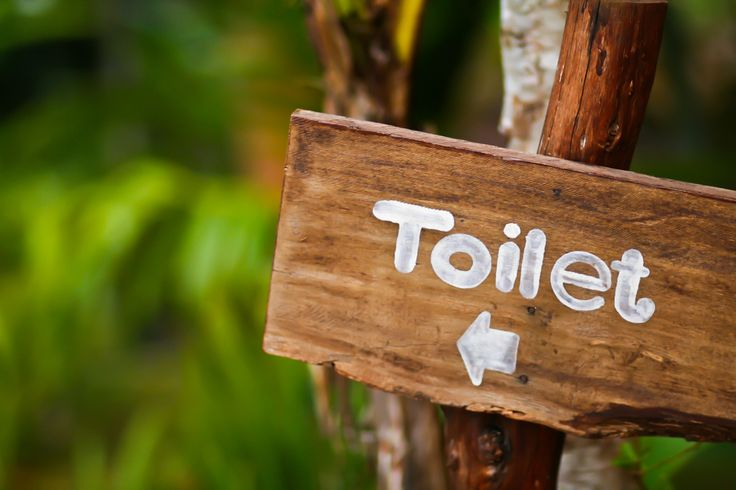Poop can say a lot about a person's health. Here are 5 things to look for.