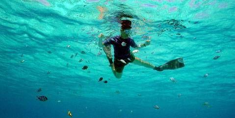 Le snorkeling ou randonnée subaquatique