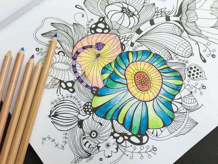 Best Tools For Adult Coloring Books