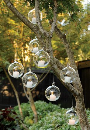 Cheap terrarium reptiles, Buy Quality plant antibiotics directly from China terrarium glass Suppliers: 12 pieces globe shape glass terrariums,hanging candle holder Material:High boron silicon glass Size:Have 8cm/10cm/12cm