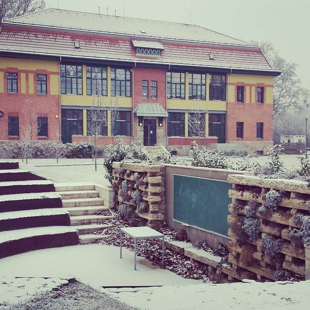 Maybe we should offer open air classes for polar bears. #winter #campus #Budapest #classroom