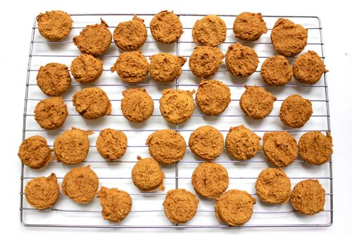 Pumpkin puppy treats adapted from The Organic Dog Biscuit Cookbook