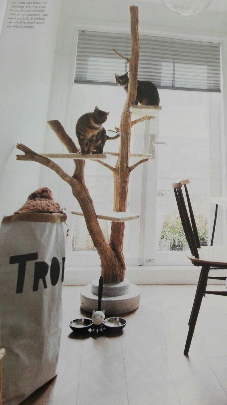 25 beste idee n over krabpaal op pinterest. Black Bedroom Furniture Sets. Home Design Ideas