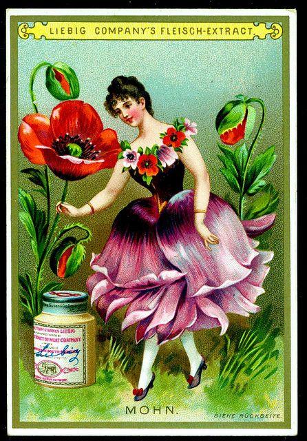 Liebig S268 - Flower Girls 1890 - Poppy | Flickr - Photo Sharing!