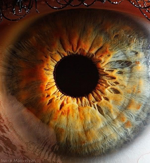 Extreme Close-Ups of the Human Eye - Amazing Pics!, page 1