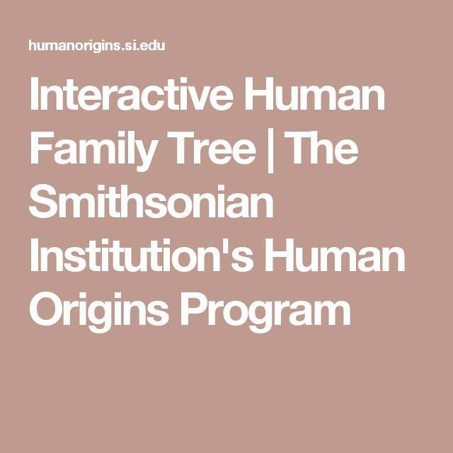 Interactive Human Family Tree | The Smithsonian Institution's Human Origins Program