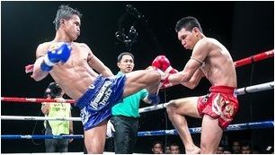 Muay Thai Ultimate Fights
