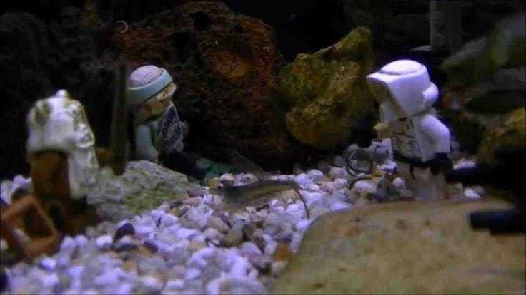 65 best l i h 23 aquarium decor images on pinterest for Star wars fish tank decor