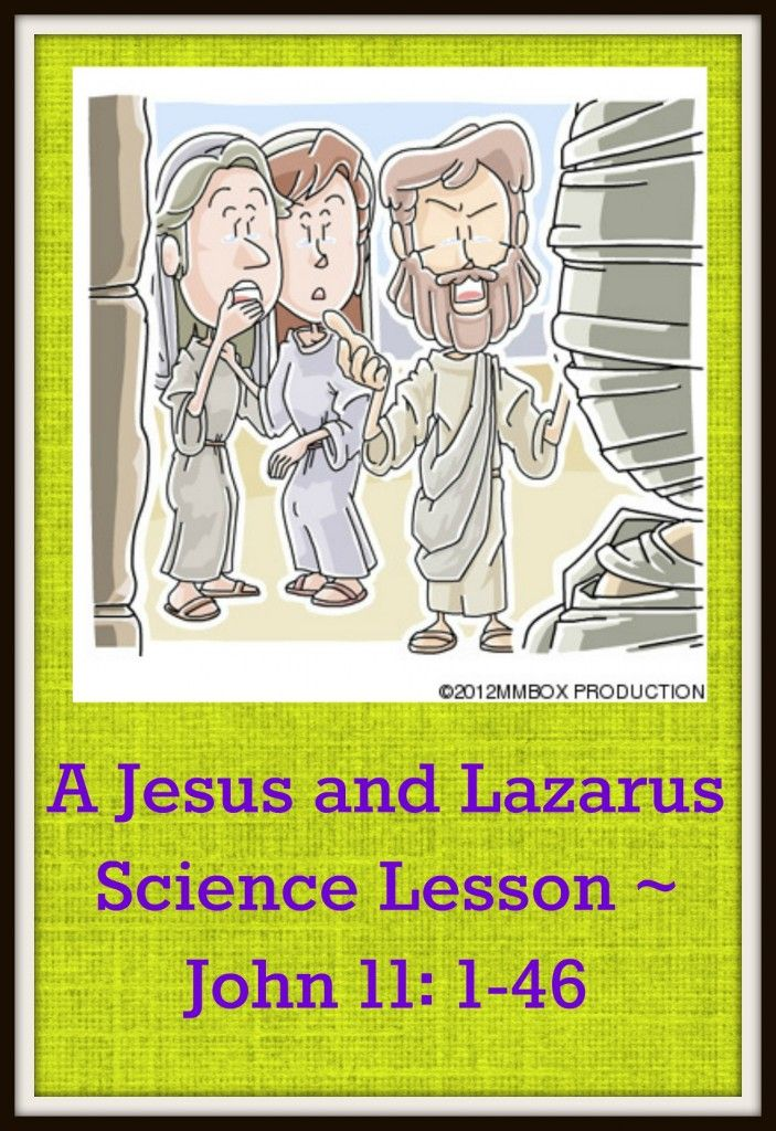 A Jesus And Lazarus Science Lesson John 11 1 46 Ultimate
