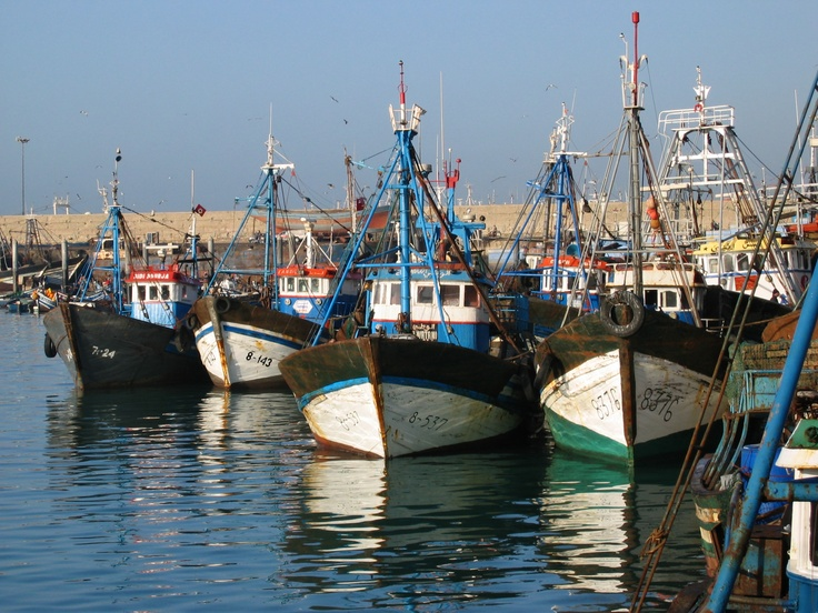 Agadir fishing harbour