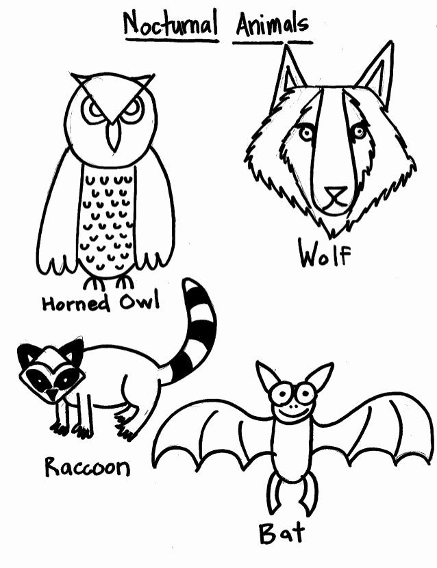 Animal Coloring Pages For 1st Grade Fresh Smart With Art Nocturnal Animals Reference Sheet 1 In 2020 Animal Coloring Pages Unicorn Coloring Pages Minion Coloring Pages