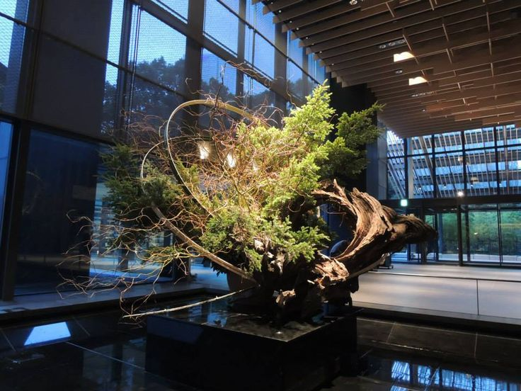 Sogetsu Ikebana as practised in Japan. Quite a sight! — with Raquel Lea Kogan.
