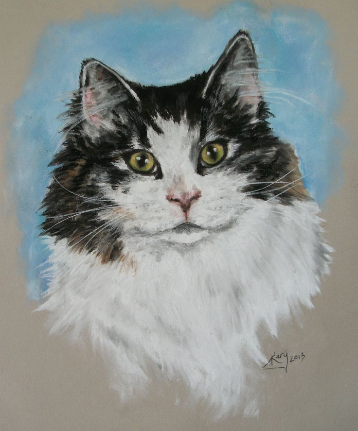 Kitty by Kary
