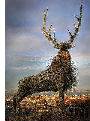 reindeer...not a basket, but fabulously woven