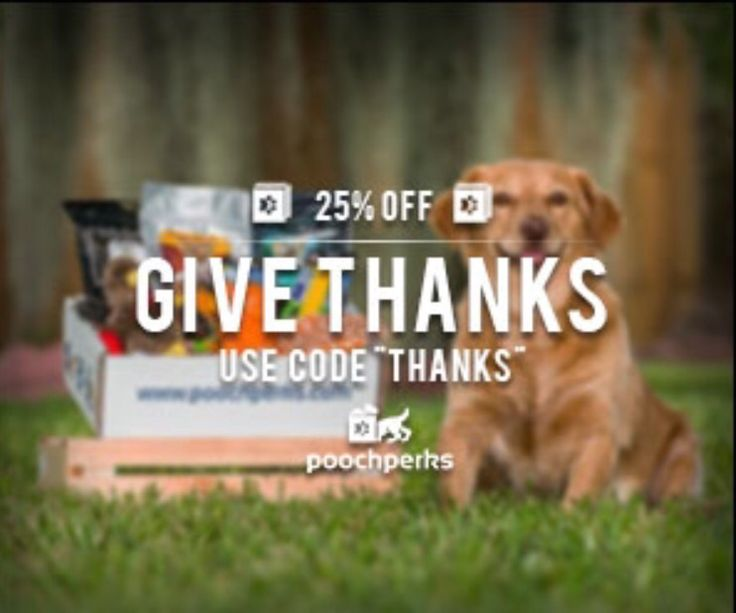 25 best sales discounts coupons oh my images on pinterest givethanks to your pooch this holiday with 25 off using code thanks fandeluxe Gallery